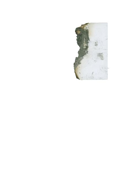http://www.annesophietritschler.com/files/gimgs/18_dos-erwin-burnt-plat.jpg